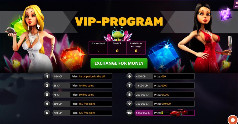 VIP program page